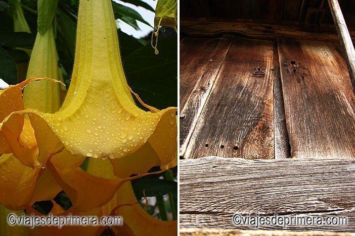 Algunos detalles de los hórreos de Espinaredo, sus paredes de madera y las flores que les rodean