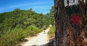 La Ruta de las Trincheras por La Jarosa es una ruta senderista señaliza en la Sierra de Madrid