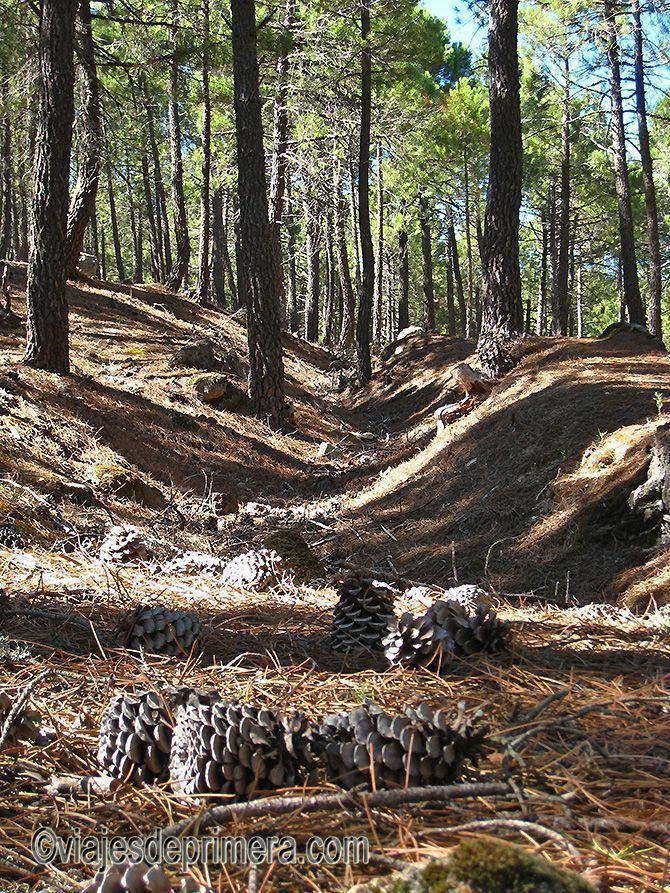 En la Sierra de GUadarrama todavía se pueden apreciar las trincheras utilizadas por las tropas republicanas y nacionales durante la Guerra Civil española