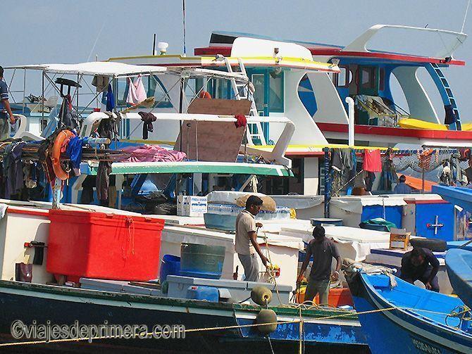 La lonja y el puerto de Malé son dos de los lugares de interés de la capital de Maldivas