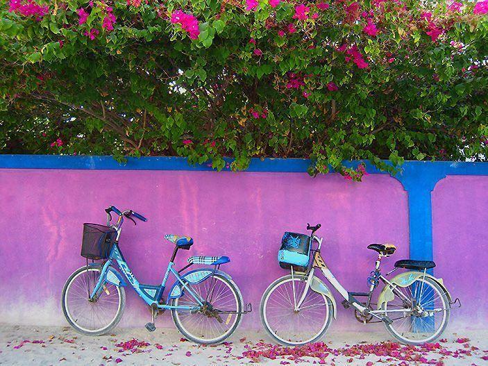 Las bicicletas son la mejor manera de moverse por las islas nativas,lugares de interés en Maldivas