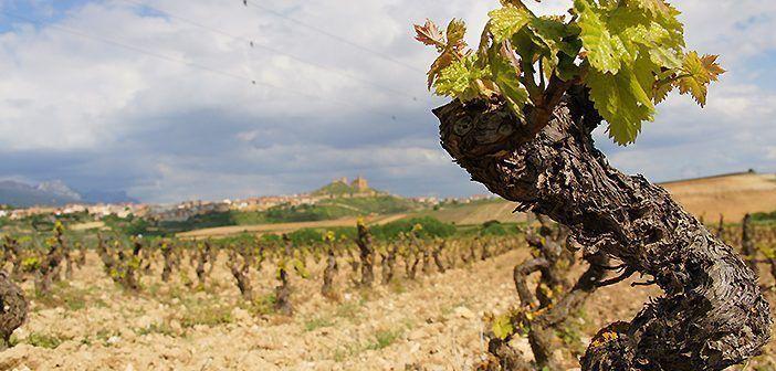 San Vicente de la Sonsierra es uno de los pueblos pintorescos que ver en la Rioja