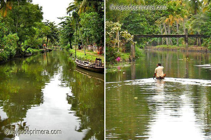 Los Backwaters de Kerala se pueden recorrer en una barca de remos local o en las antiguas embarcaciones arroceras, muchas de ellas reconvertidas en hoteles flotantes.