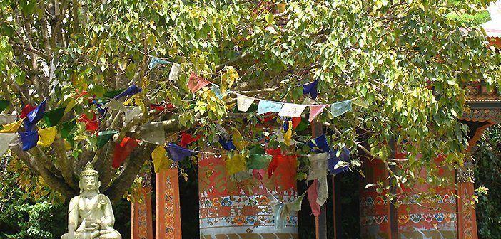 Monasterio de Khamsun Yuley en Bután.