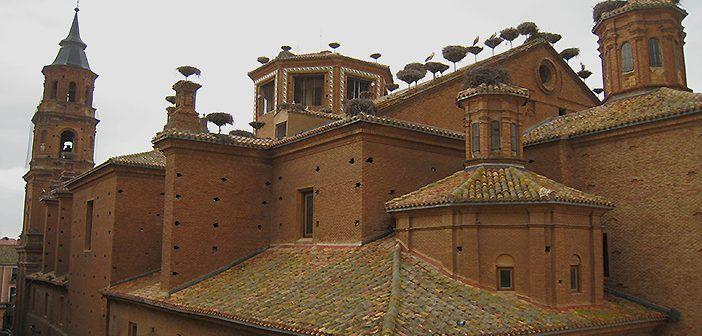 La colegiata de San Miguel de Alfaro tiene la mayor concentración urbana de cigüeña blanca en un solo edificio