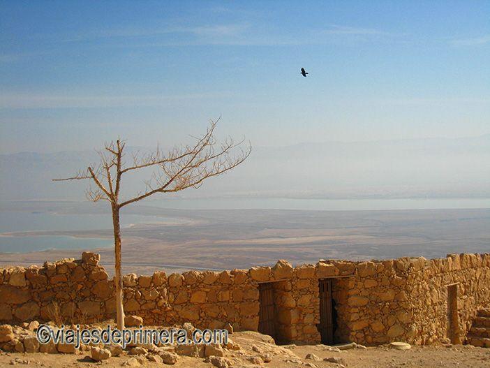 Masada es uno de los lugares de interés alrededor del Mar Muerto, una parada obligada si viajas al Desierto del Neguev