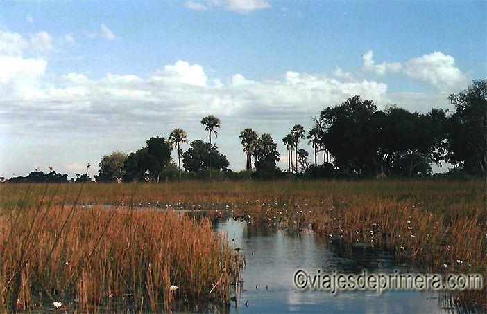 El amanecer es uno de los mejores momentos para recorrer el Delta del Okavango en mokoro, la embarcación tradicional de Botswana