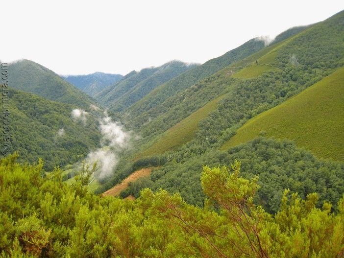 Paisajes de la Reserva Natural Integral de Muniellos, en Cangas de Narcea, Asturias