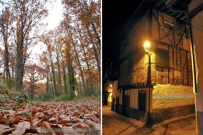 Castañares alrededor de Hervás y una casa tradicional en su Barrio Judío, parada fundamental en la Vía de la Plata a su paso por Extremadura.