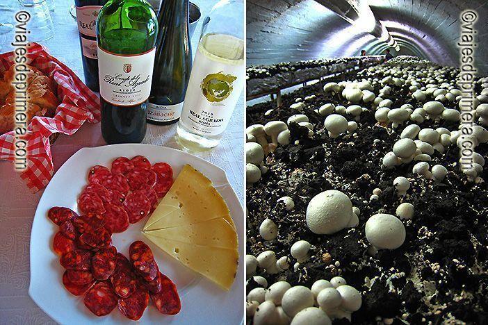 Típica merienda riojana en un viñedo cerca de Aldeanueva de Ebro, en La Rioja Baja; centro champiñonero en Pradejón, el mayor productor de champiñón de España, en La Rioja.