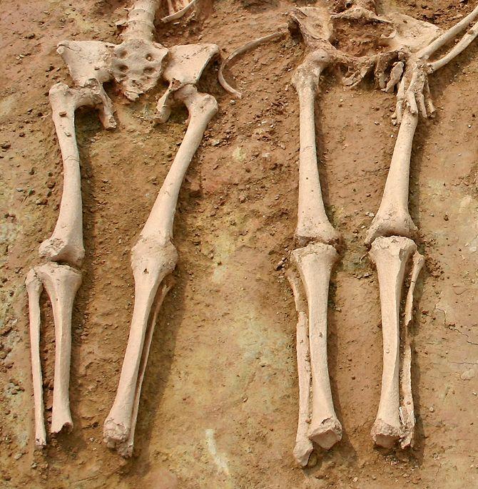 Algunos cuerpos de la necrópolis judía de Tárrega dan fe de sus muertes violentas, durante el asalto al la judería, o caí, en el siglo XIV.