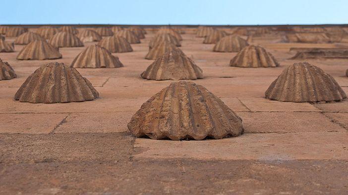 Hay quien encuentra un significado amoroso en la decoración de conchas de la Casa de las Conchas de Salamanca.