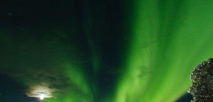 Las auroras boreales son un fenómeno físico que se concentra alrededor del Polo Norte magnético