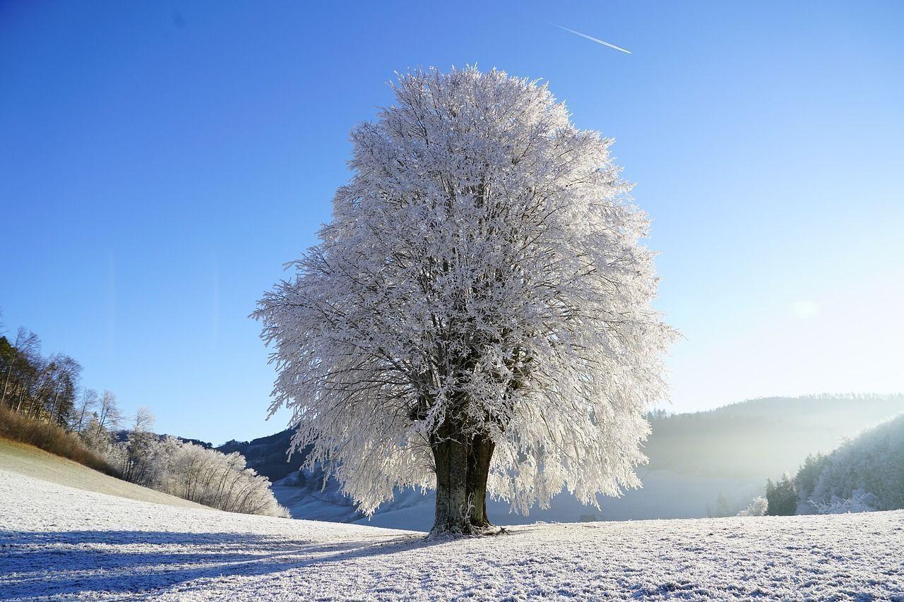 La temperatura en la Laponia finlandesa más baja jamás registrada alcanzó los -51.5 grados Celsius en enero de 1999