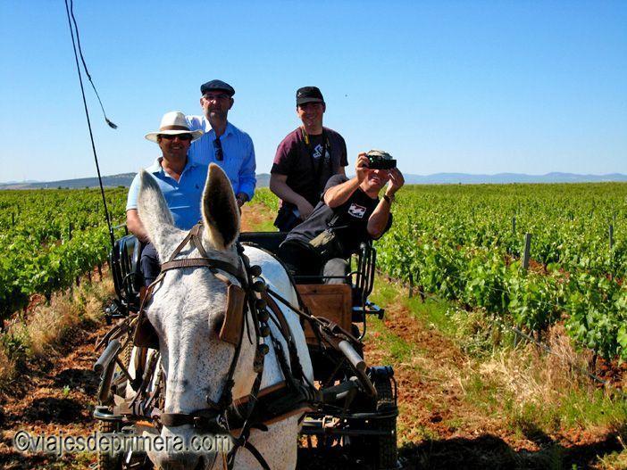 El enoturismo de Extremadura también permite recorrer bodegas y viñedos en calesas tradicionales.