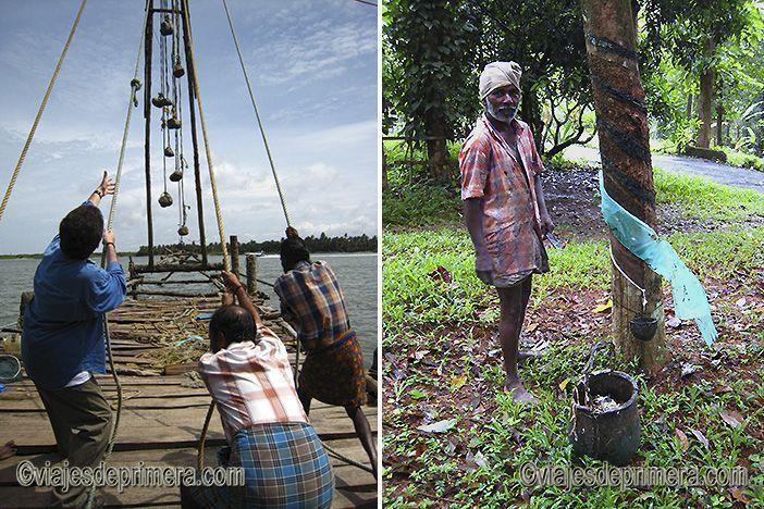 La pesca con redes chinas o la recogida manual del caucho son otras tradiciones de la cultura de Kerala
