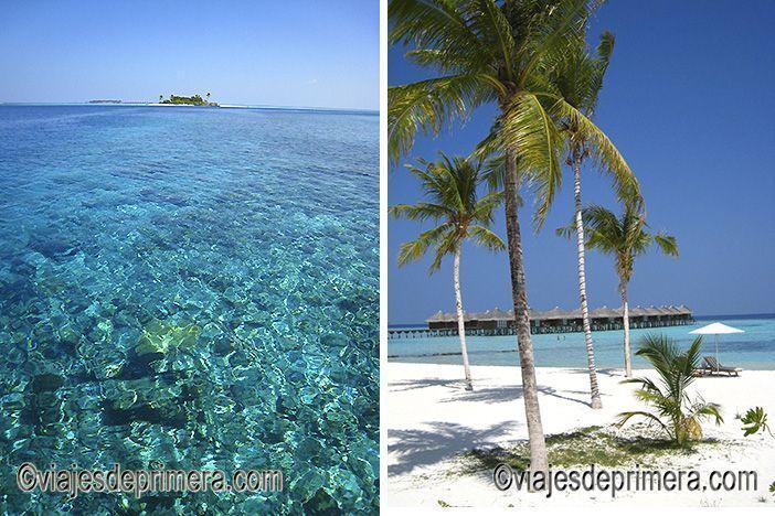 Maldivas es uno de los destinos más recomendables para los amantes del buceo y del submarinismo