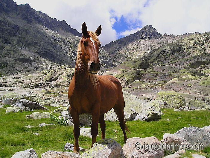 Mejores Paradores de España, el de Gredos, muy cerca del macizo montañoso del mismo nombre