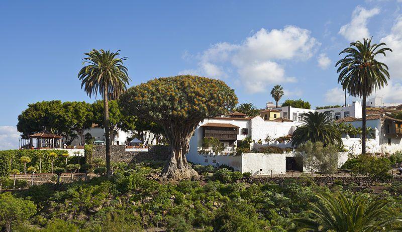 El Drago milenario es uno de los lugares que ver en Icod_de los Vinos, en Tenerife