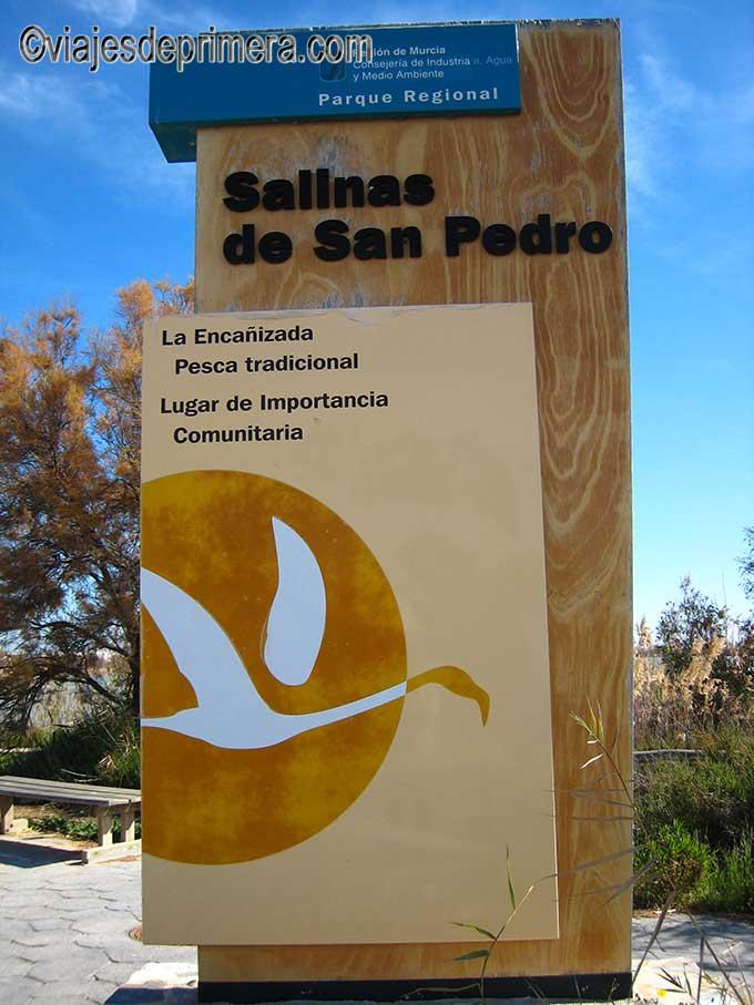 El Parque Regional de San Pedro del Pinatar es zona Zepa y Humedal de alto valor natural